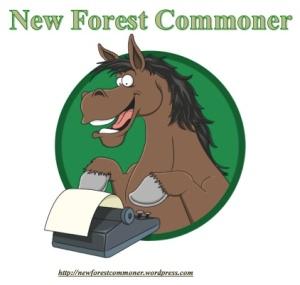 New Forest Commoner - avatar